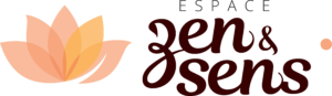 zs logo longueur 1 300x87